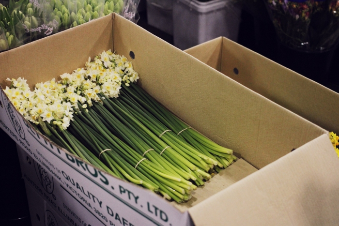 TheMondayIssue-SydneyFlowerMarkets27